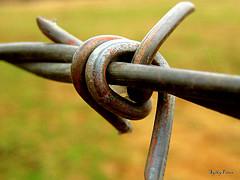 Steel knot